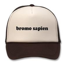 Bromosapien hat. Image via Zazzle.com.