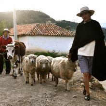 Campesinos in Monguí, Boyaca, Colombia. Image via Wylio.
