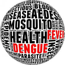 Dengue fever info-text. Via mrfiza / Shutterstock