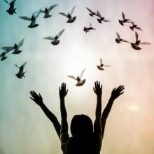 Freedom concept,  Pan Xunbin / Shutterstock.com