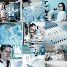 Scientists in a lab, anyaivanova / Shutterstock.com