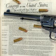 Bill of Rights, Charles Knowles / Shutterstock.com
