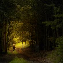 Rudolf Vlcek/Shutterstock