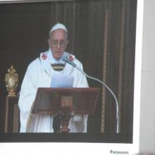 Pope Francis in March, emipress / Shutterstock.com
