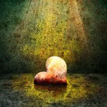 Heart illustration, winui / Shutterstock.com