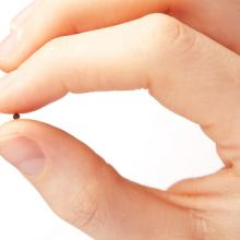 Hand holdng a mustard seed, ptnphoto / Shutterstock.com