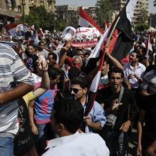 Egyptian protestors on June 30, Mohamed Elsayyed / Shutterstock.com