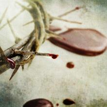 Crown of thorns, Stephanie Frey / Shutterstock.com