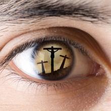Jesus Cervantes/Shutterstock.com