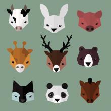 Zoo animals, Sviatlana St / Shutterstock.com
