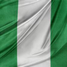 Nigerian flag. Image via STILLFX/shutterstock.com