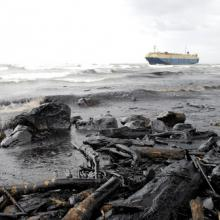 Oil spill illustration, fish1715 / Shutterstock.com