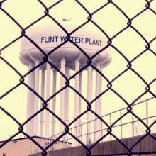 Flint Water Tower Plant