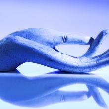 Hand illustration, Room27 / Shutterstock.com
