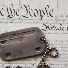 Photo: Dogtags on the Constitution, Sergey Kamshylin / Shutterstock.com