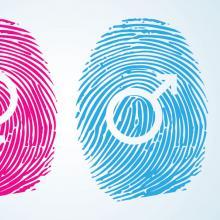 Gender symbols, SoulCurry / Shutterstock.com