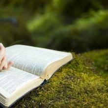 Photo: Woman reading Bible, © Jacob Gregory / Shutterstock.com