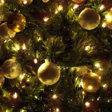 Photo: Christmas tree, © Jennifer Nickert / Shutterstock.com