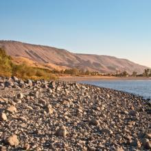 Sea of Galilee, Lara65 / Shutterstock.com