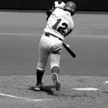 Black and white image of baseball player, Richard Paul Kane / Shutterstock.com