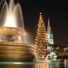 Christmas lights in London's Trafalgar Square, St. Martin's in the Field behind.